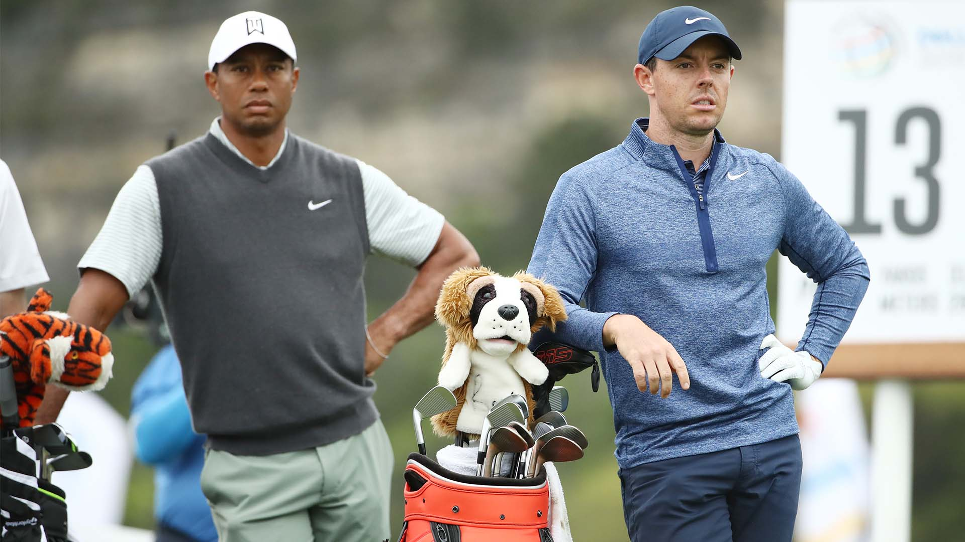 report  tiger woods  rory mcilroy to take part in skins