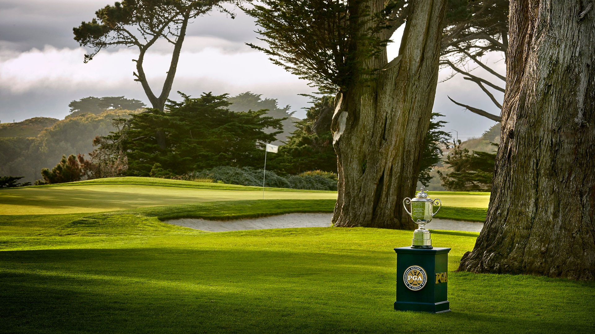 Report: PGA Championship to be contested without fans at TPC Harding Park | Golf Channel