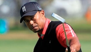 Tiger Woods API 304