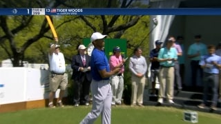 Highlight: Tiger tops Wise in WGC opening match