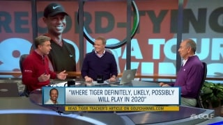 Adams: Tiger tapping back into vintage 'old Tiger'