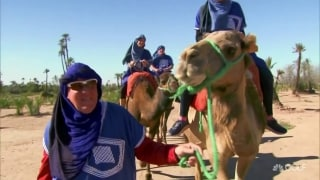 Daly takes a stroll with camels in Morocco
