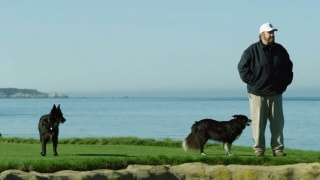 Tending to Pebble Beach: A superintendent and his dogs