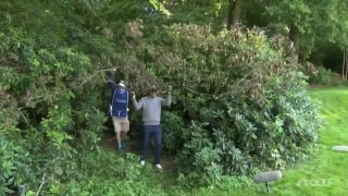 Moving a tree limb doesn't help Harrington in Northern Ireland