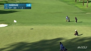Harigae drops crazy birdie from off the green on No. 12