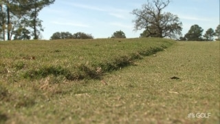 Isenhour: Players must avoid Bermuda rough at Memorial Park