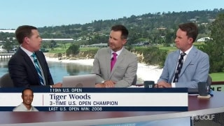 Immelman: Tiger 'loves doing things nobody has ever done before'
