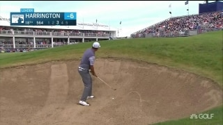 Harrington gets up and down for 63 at the Irish Open