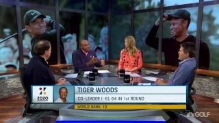 Hack: Tiger clawing back 'reminds me who he is, who he was, who he will be this season'