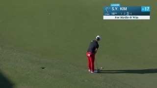 S.Y. Kim sinks putt worth $1.5 million on final hole to win in Naples
