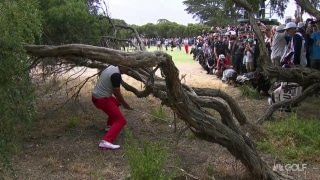 Houdini: Fowler pulls off great escape from mangled tree