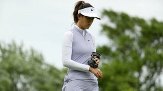 Wie shuts it down for remainder of year