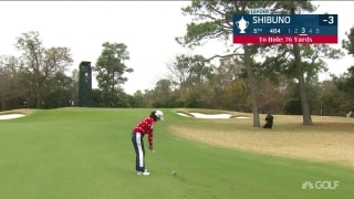 Shibuno recovers from mistake to save par at USWO
