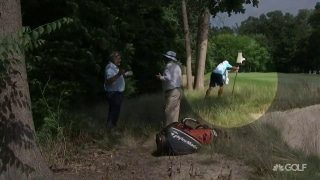 U.S. Senior Open: Clarke penalized for caddie removing birdhouse