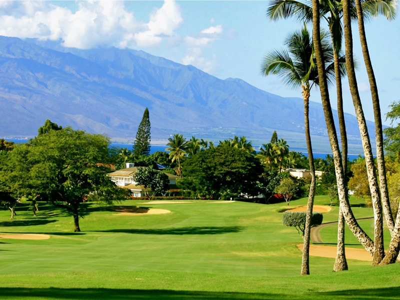 Old Blue at Wailea