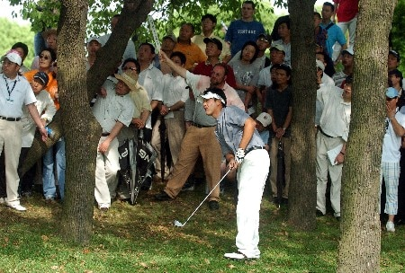 Eddie Lee from New Zealand watches his shot from the trees on 13 during RD3Photo by Jeff Crow/WireImage.com