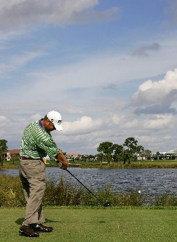 PALM BEACH GARDENS, FL - MARCH 1:  Dudley Hart plays a shot on the ninth hole during the third round of the Honda Classic at PGA National Resort and Spa March 1, 2008 in Palm Beach Gardens, Florida.  (Photo by Sam Greenwood/Getty Images)