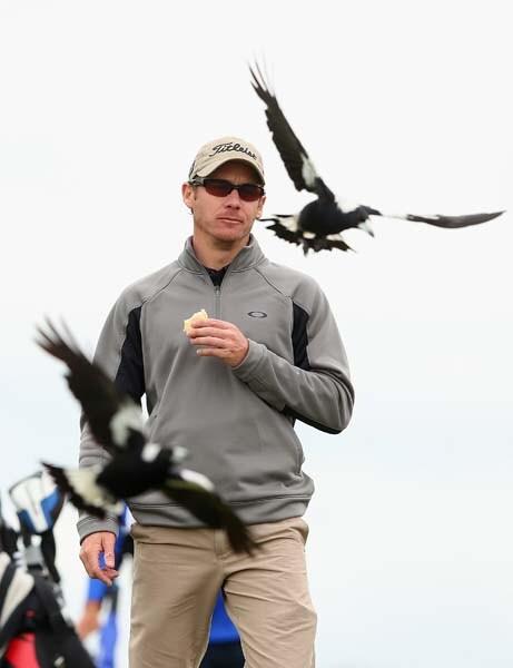 Not the birdies he had in mind