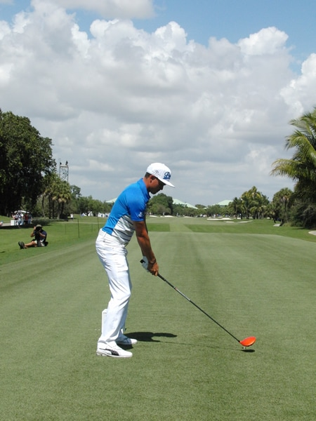Fowler swing sequence, 1