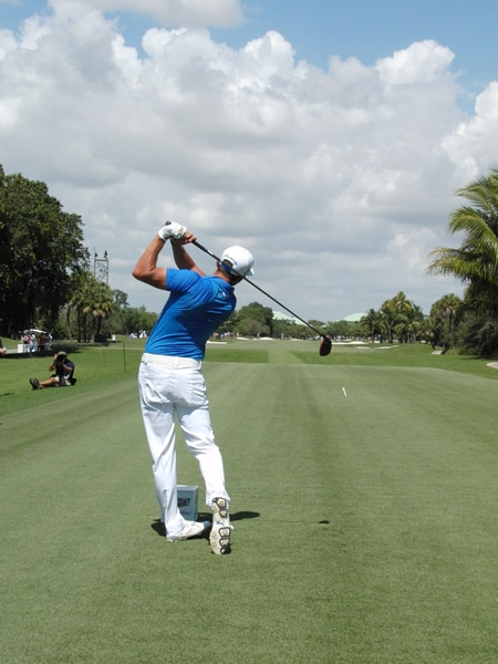 Fowler swing sequence, 10