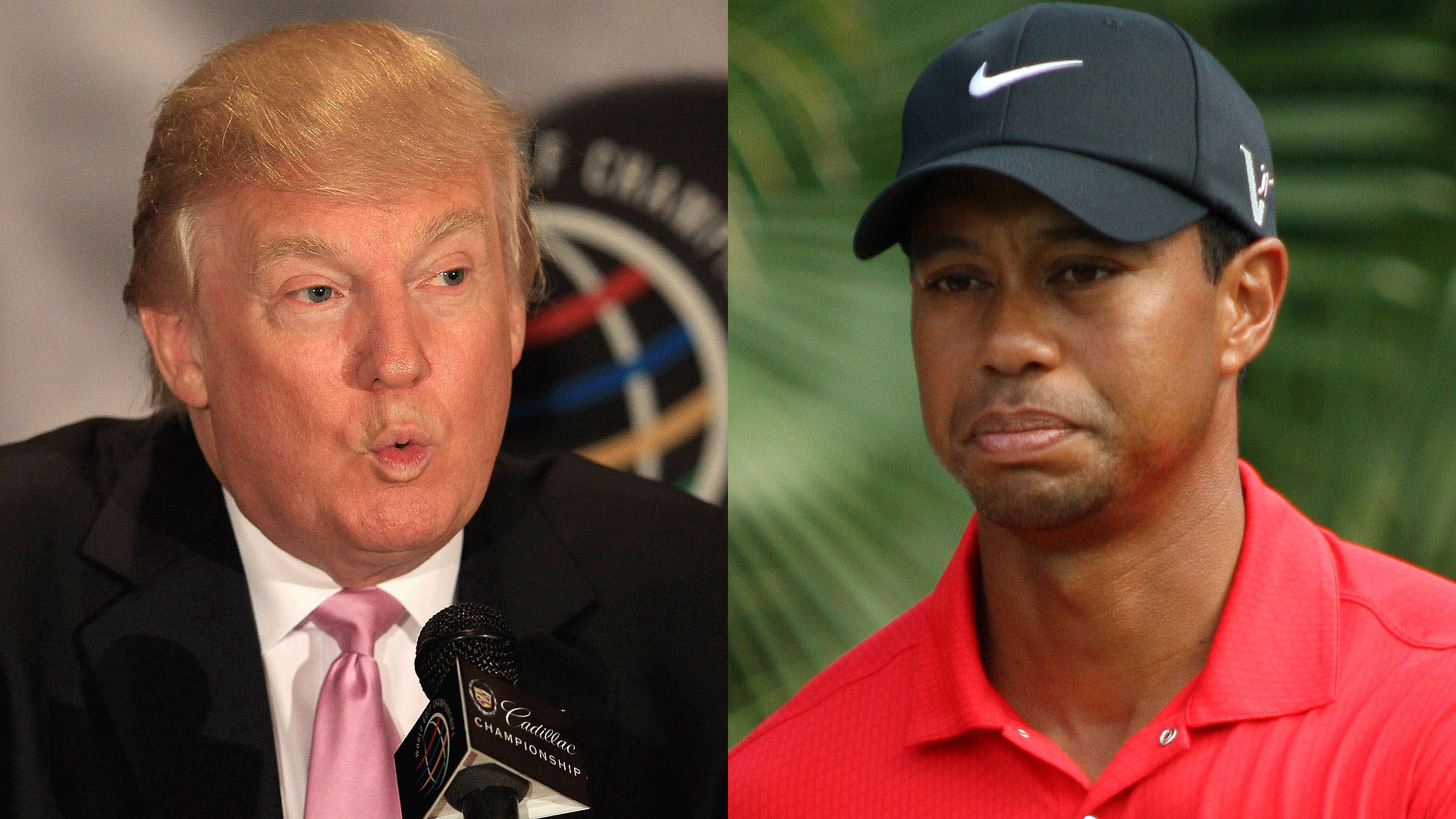 3. 2012: Trump in, Tiger out