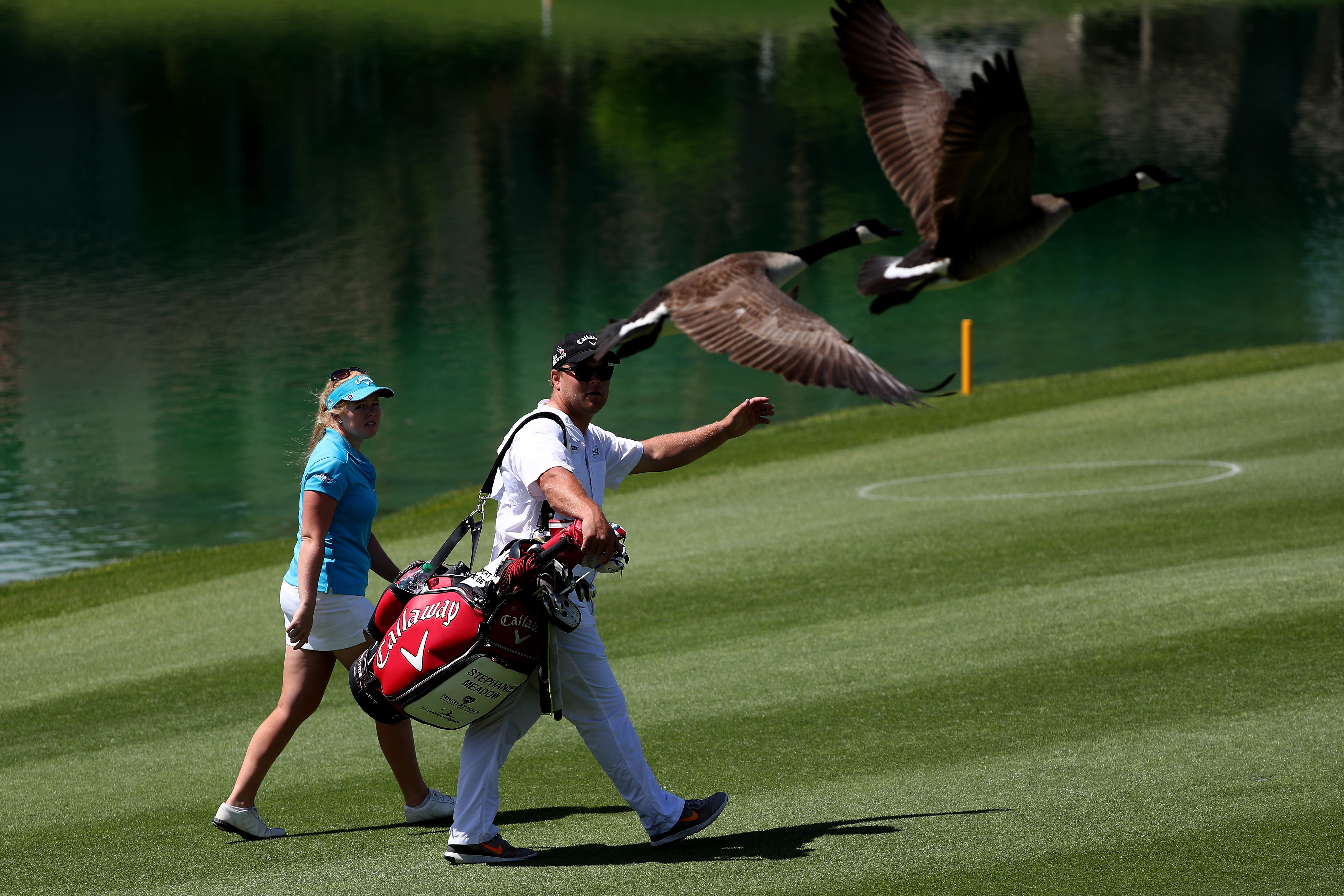 'This course is for the birds'