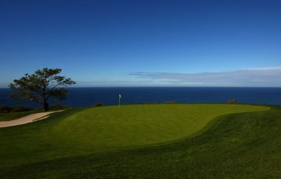 A general view of the 4th green during the second round of the Buick Invitational on January 25, 2008 at the Torrey Pines Golf Course in  La Jolla, California. PGA TOUR - 2008 Buick Invitational - Round TwoPhoto by Donald Miralle/Getty Images