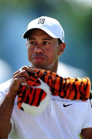 CHASKA, MN - AUGUST 12:  Tiger Woods looks on during the third preview day of the 91st PGA Championship at Hazeltine National Golf Club on August 12, 2009 in Chaska, Minnesota.  (Photo by Stuart Franklin/Getty Images)