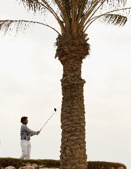 DOHA, QATAR - JANUARY 25:  Robert-Jan Derksen of Holland on the par four 11th hole during the second round of the Commercial Bank Qatar Masters held at the Doha Golf Club on January 25, 2008 in Doha,Qatar.  (Photo by Ross Kinnaird/Getty Images)