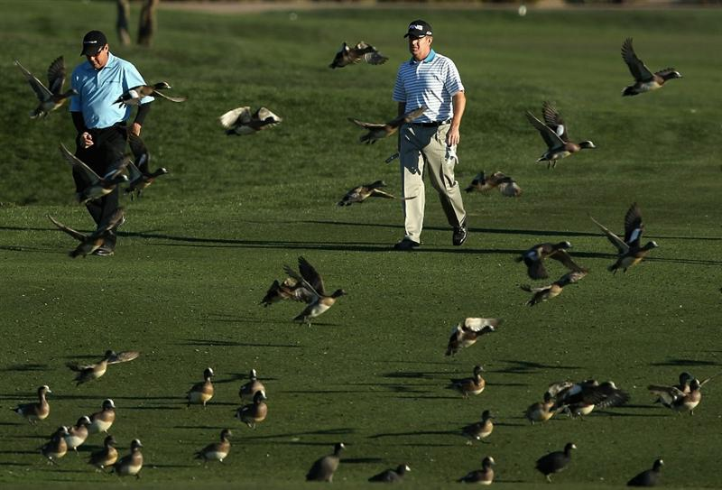 SCOTTSDALE, AZ - FEBRUARY 04:  Rich Beem and Jeff Maggert walk the 11th hole fairway as a flock of ducks fly away during the second round of the Waste Management Phoenix Open at TPC Scottsdale on February 4, 2011 in Scottsdale, Arizona.  (Photo by Christian Petersen/Getty Images)