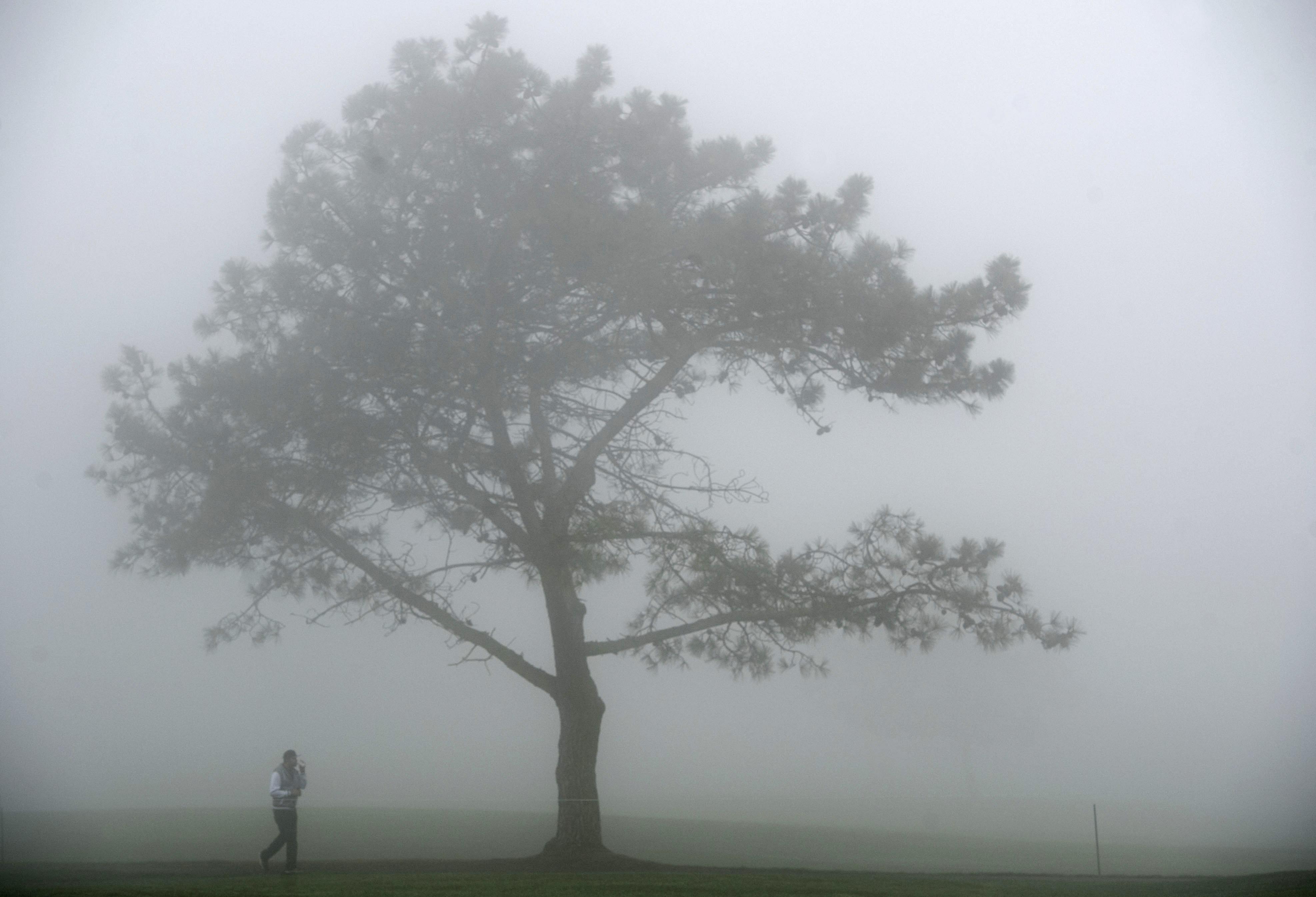 Fog at Torrey Pines