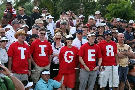 MIAMI - MARCH 23:  Patient Tiger Woods fans await his arrival on the 4th green during the final round of the 2008 World Golf Championships CA Championship at the Doral Golf Resort & Spa, on March 23, 2008 in Miami, Florida.  (Photo by David Cannon/Getty Images)
