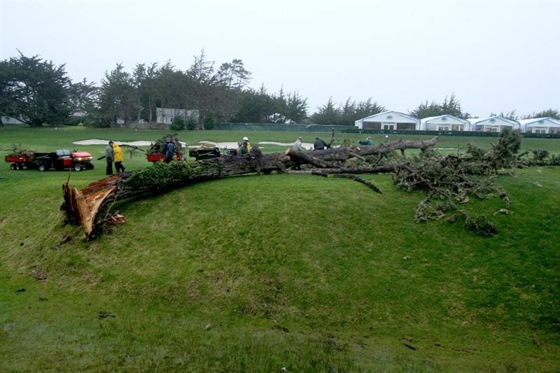 PEBBLE BEACH, CA - FEBRUARY 15:   Course workers remove a tree which fell overnight onto the third fairway before the final round of the AT&T Pebble Beach National Pro-Am at Pebble Beach Golf Links on February 15, 2009 in Pebble Beach, California.  (Photo by Stephen Dunn/Getty Images)