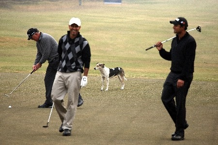 DELHI, INDIA - FEBRUARY 5: Mark O'Meara of the USA (L) holes his putt, watched by a dog, as Jeeve Milkha Singh of India and Arjun Atwal of India (R) enjoy the moment on the 16th green during the Challenge Match, in the Emaar-MGF Indian Masters at the Delhi Golf Club on February 5, 2008 in Delhi, India.  (Photo by David Cannon/Getty Images)