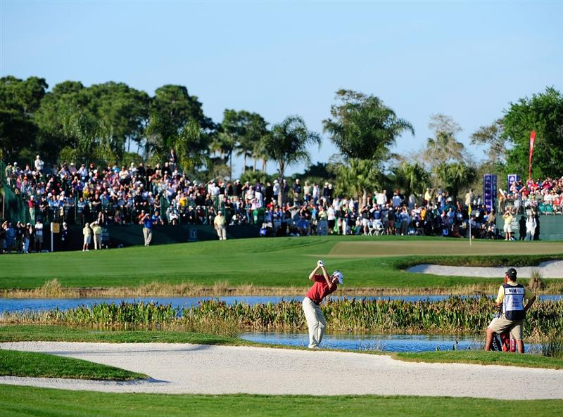 PALM BEACH GARDENS, FL - MARCH 07:  George McNeill plays a shot on the 16th hole during the final round of the Honda Classic at PGA National Resort And Spa on March 7, 2010 in Palm Beach Gardens, Florida.  (Photo by Sam Greenwood/Getty Images)