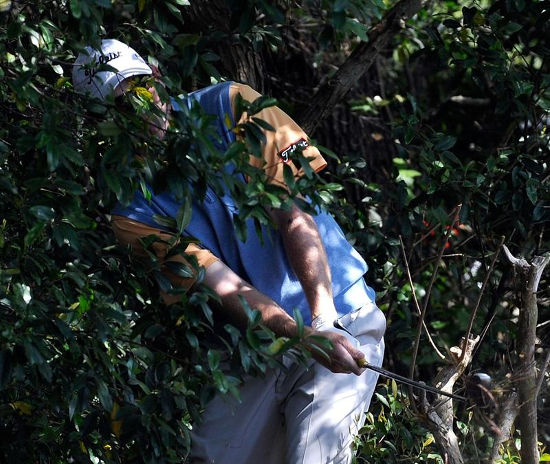 PALM HARBOR, FL - MARCH 21:  Troy Matteson plays a shot from the bushes on the 8th hole during the third round of the Transitions Championship at the Innisbrook Resort and Golf Club on March 21, 2009 in Palm Harbor, Florida.  (Photo by Sam Greenwood/Getty Images)