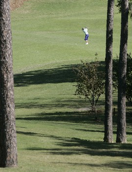 MOBILE, AL - NOVEMBER 8: Annika Sorenstam of Sweden hits her approach to the fourth hole during first round play in The Mitchell Company LPGA Tournament of Champions at Magnolia Grove Golf Course November 8, 2007 in Mobile, Alabama.  (Photo by Dave Martin/Getty Images)