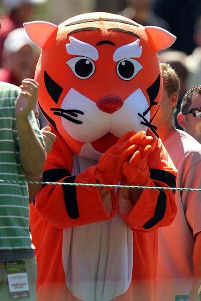 Fan in a Tiger costume