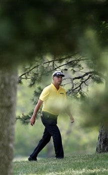 GRAND BLANC, MI - JUNE 27:  Daniel Chopra from Sweden tries to find a open area in the trees on the ninth hole to hit his second shot during the second round of the Buick Open at Warwick Hills Golf and Country Club on June 27, 2008 in Grand Blanc, Michigan.  (Photo by Gregory Shamus/Getty Images)