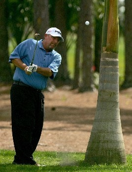 PALM BEACH GARDENS, FL - MARCH 1: Mark Calcavecchia hits a shot left-handed on the second hole during the third round of the Honda Classic at PGA National Resort and Spa March 1, 2008 in Palm Beach Gardens, Florida.  (Photo by Sam Greenwood/Getty Images)