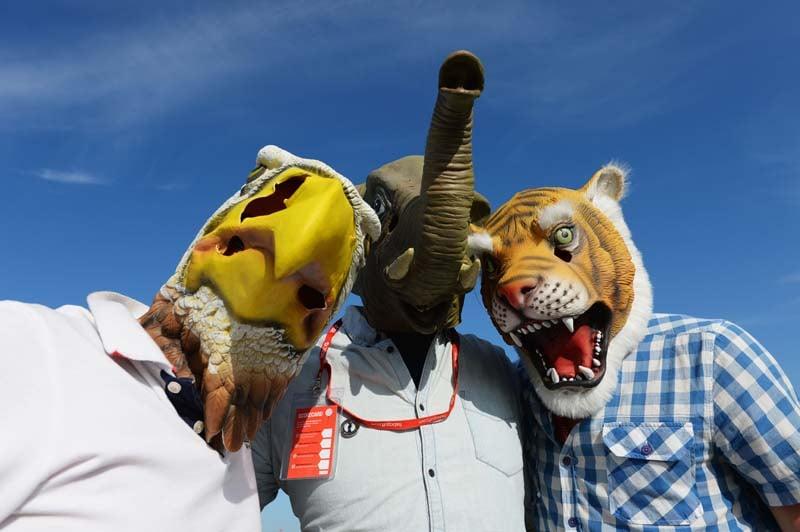 Spectators in animal masks