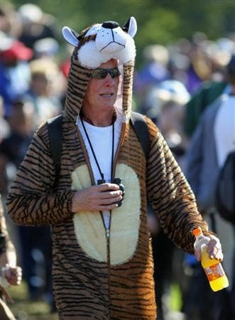 NEWPORT, WALES - OCTOBER 04:  A golf fan wearing a tiger suit looks on in the singles matches during the 2010 Ryder Cup at the Celtic Manor Resort on October 4, 2010 in Newport, Wales. (Photo by Jamie Squire/Getty Images)