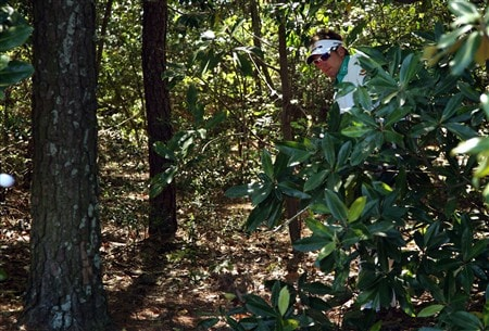 AUGUSTA, GA - APRIL 13:  Ian Poulter of England watches his second shot from the trees on the fifth hole during the final round of the 2008 Masters Tournament at Augusta National Golf Club on April 13, 2008 in Augusta, Georgia.  (Photo by David Cannon/Getty Images)