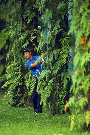 KUALA LUMPUR, MALAYSIA - FEBRUARY 12:  Wen-Teh Lu Chinese Taipei plays from the trees during the first round of the 2009 Maybank Malaysian Open at Saujana Golf and Country Club on February 12, 2009 in Kuala Lumpur, Malaysia.  (Photo by Ian Walton/Getty Images)