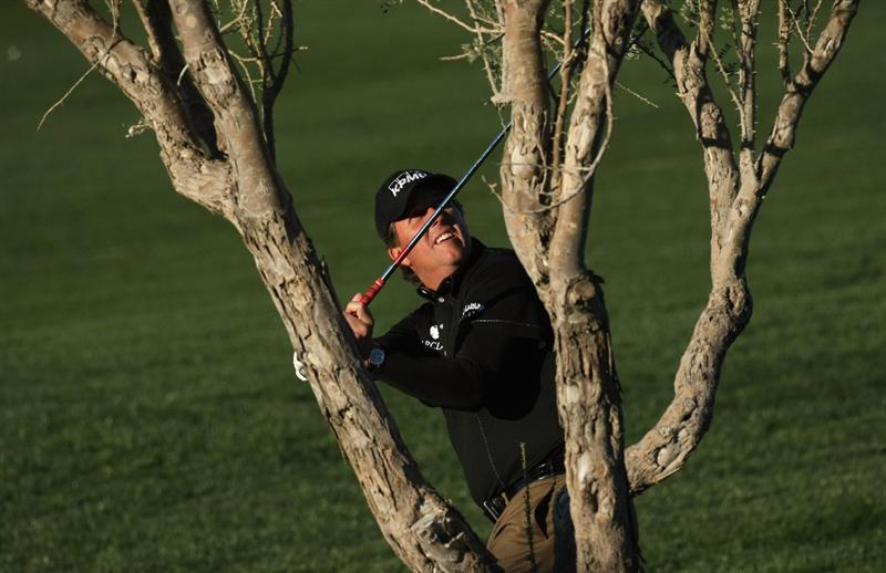 SCOTTSDALE, AZ - JANUARY 30:  Phil Mickelson checks his club clearance from a lie under a tree on the 11th hole during the second round of the FBR Open on January 30, 2009 at TPC Scottsdale in Scottsdale, Arizona.  (Photo by Stephen Dunn/Getty Images)