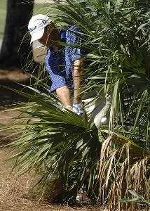 Ryan Palmer plays from a bush on the fifth hole during the final round of the 2006 Chrysler Championship held at the Westin Innisbrook Golf Resort in Palm Harbor, Florida on October 29, 2006. PGA TOUR - 2006 Chrysler Championship - Final RoundPhoto by Al Messerschmidt/WireImage.com