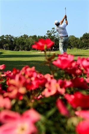 PONTE VEDRA BEACH, FL - MAY 12:  Phil Mickelson hits a tee shot on the 12th hole during the first round of THE PLAYERS Championship held at THE PLAYERS Stadium course at TPC Sawgrass on May 12, 2011 in Ponte Vedra Beach, Florida.  (Photo by Streeter Lecka/Getty Images)