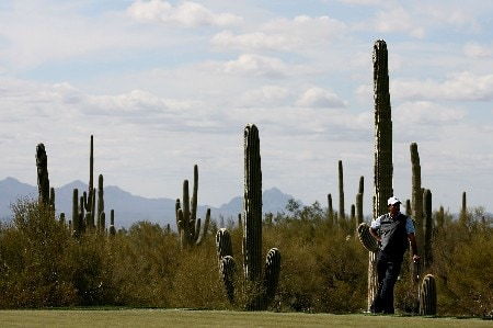 MARANA, AZ - FEBRUARY 21:  Tiger Woods stands near the 11th green during the second round matches of the WGC-Accenture Match Play Championship at The Gallery at Dove Mountain on February 21, 2008 in Marana, Arizona.  (Photo by Travis Lindquist/Getty Images)