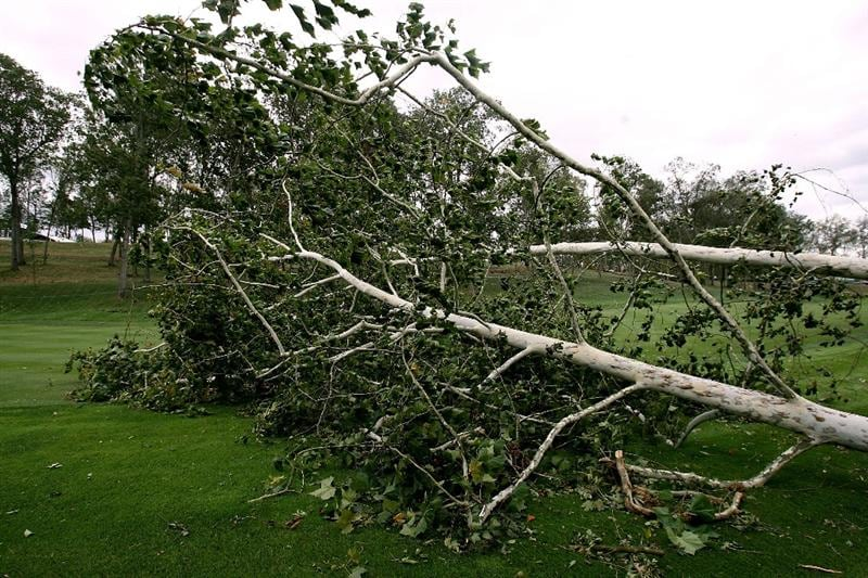 LOUISVILLE, KY - SEPTEMBER 14: A branch lays on the course after being blown over in high winds on the course prior to the 37th Ryder Cup at Valhalla Golf Club on September 14, 2008 in Louisville, Kentucky. (Photo by Andy Lyons/Getty Images)