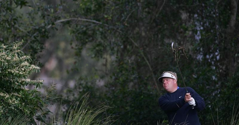 PALM HARBOR, FL - MARCH 18:  Carl Pettersson of Sweden hits a shot from deep in the rough during the first round of the Transitions Championship at the Innisbrook Resort and Golf Club held on March 18, 2010 in Palm Harbor, Florida.  (Photo by Michael Cohen/Getty Images)